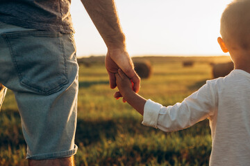 Fototapeta Father's and his son holding hands at sunset field. Dad leading son over summer nature outdoor. Family, trust, protecting, care, parenting concept obraz