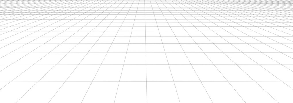 Vector perspective mesh. Detailed lines on a white background. 3d illustration.