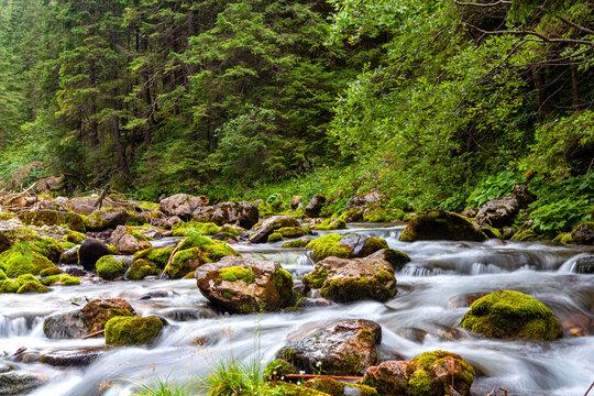 A rushing mountain stream in the Tatra Mountains