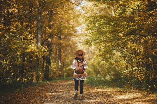 Stylish woman hipster with backpack in hat walking in sunny autumn woods. Young female traveler hiking in fall forest, beautiful moment. Travel and wanderlust concept, space for text. Back view