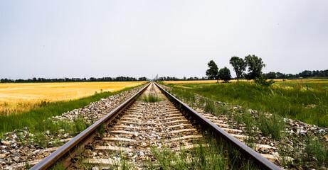 empty railroad track in the field