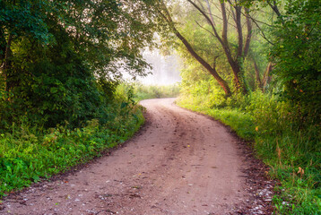 Fototapeta  Poranny spacer doliną rzeki Supraśl, Podlasie, Polska obraz