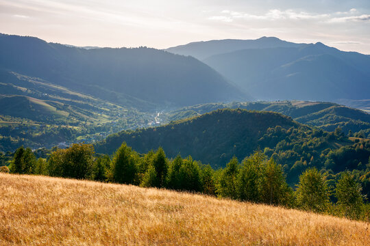 autumnal landscape of carpathian countryside. early autumn season in mountains. trees on the grassy hills rolling in to the distant valley. beautiful scenery on a warm sunny evening with clouds