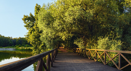 Obraz Most w parku  - fototapety do salonu