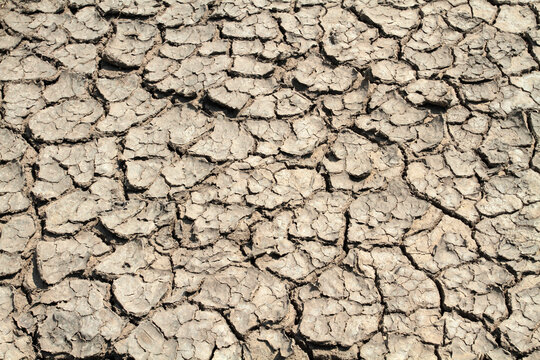 Dry earth covered with deep cracks