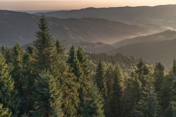 Fototapeta Dolina potoku Czercz, Beskid Sądecki, Piwniczna-Zdrój. Widok z Eliaszówki obraz