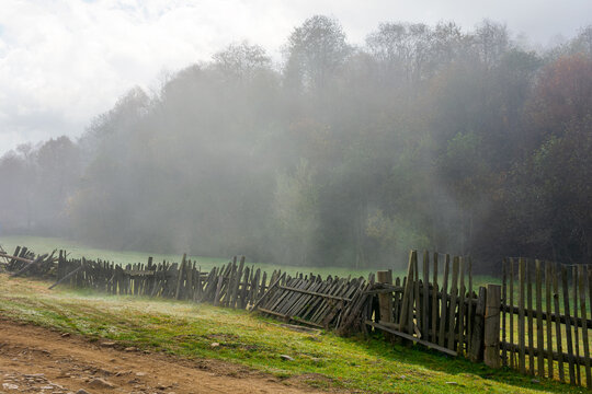 wooden fence on the field. rural landscape on a foggy morning in autumn. misty weather with overcast sky. trees in colorful foliage.