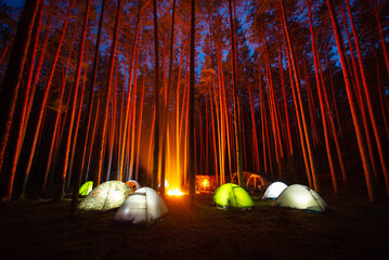Children camping in the spruce forest. Night photo of many different tents and a campfire in the middle illuminate pine trees around