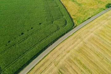 Wąska, wiejska asfaltowa droga przebiegająca przez pola uprawne. Widok z drona.