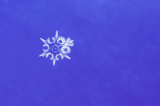 Macro image of a single snowflake