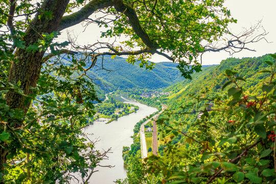 Von oberhalb Hatzenport moselaufwärts bis Moselkern