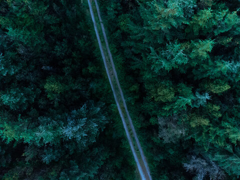 An aerial photograph of an isolated lane divides a forest, in the middle of Donegal, Ireland.