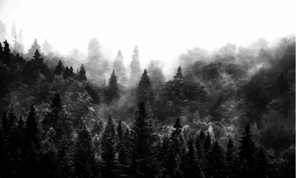 black fog forest atmospheric background wallpaper vector illustration abstract background