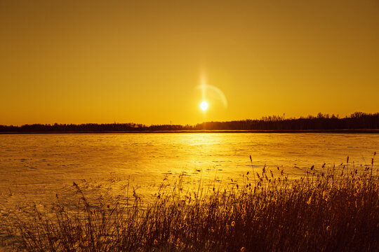 Beautiful winter sun with glares on orange sky. Nature background with snowy lake, wild pampas grass with sun.