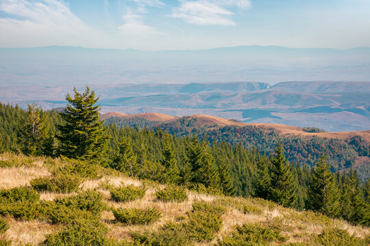mountain landscape with forested hill. bright sunny afternoon autumn weather. arieseni mountains of romania. travel back country concept