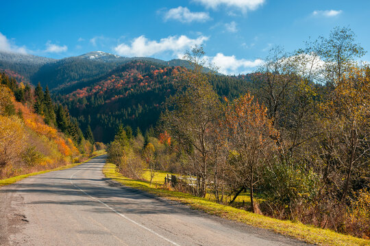countryside road in mountains. beautiful autumn landscape on a bright sunny morning. trees in colorful foliage along the way. fluffy clouds on the sky above the distant peak. travel back country