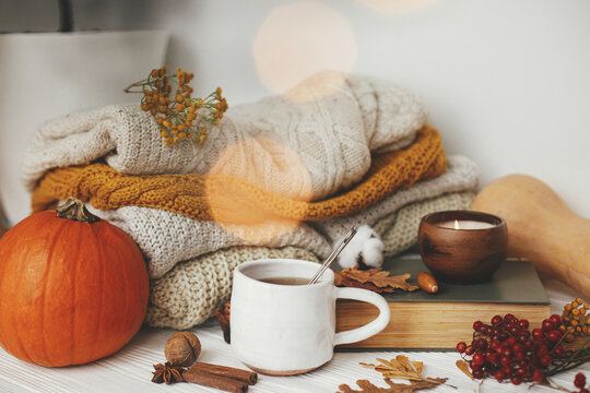 Hello autumn, cozy slow living. Pumpkin, cup of tea, cozy sweaters, autumn leaves, burning candle and vintage book in golden lights bokeh on white wooden background in room. Happy Thanksgiving