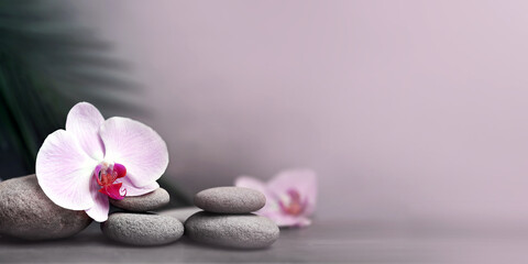 Spa stones with palm branch and flower orchid on grey background.