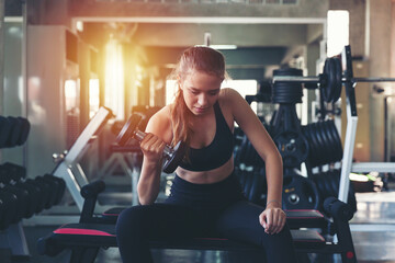 Obraz Woman lifting dumbbell weight while sitting at the gym, sports training with weight, Exercise fitness and healthy lifestyle - fototapety do salonu