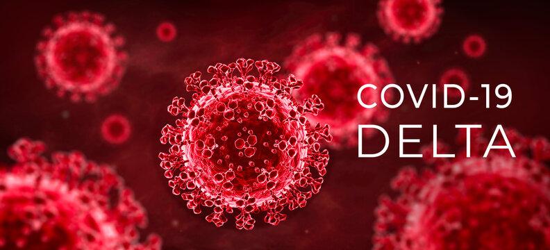 Coronavirus delta variant covid-19
