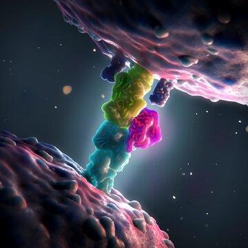 Superantigen binding to a T-cell receptor, illustration