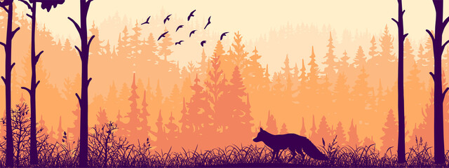 Horizontal banner. Silhouette of fox standing on meadow in forrest. Silhouette of animal, trees, grass. Magical misty landscape, fog. Pink and orange illustration. Bookmark.