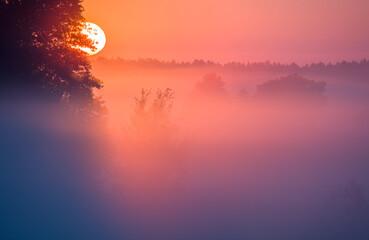 Fototapeta Letni Mglisty Wschód Słońca  obraz