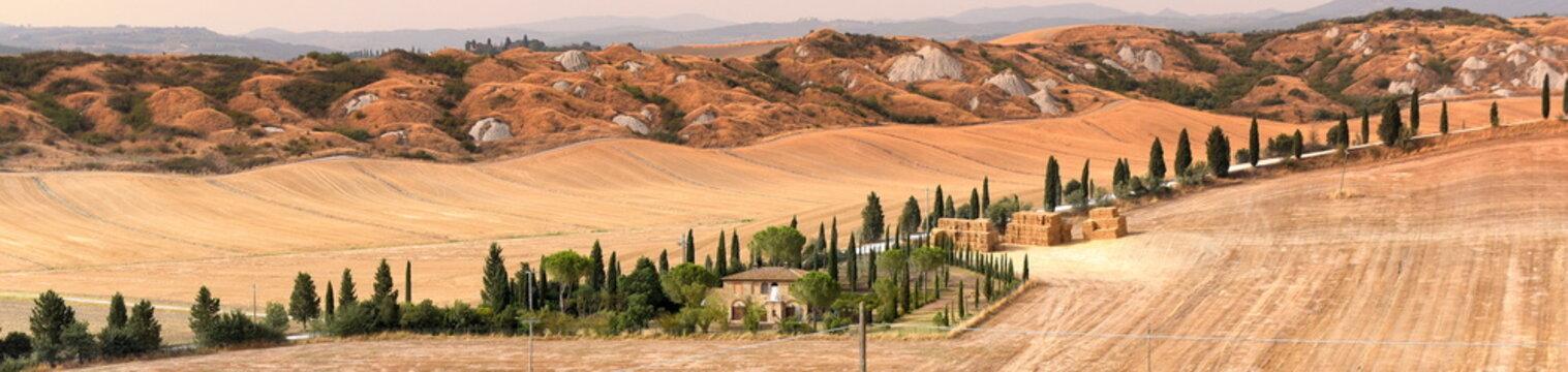 Panorama der Crete Senesi mit langer Zypressenallee