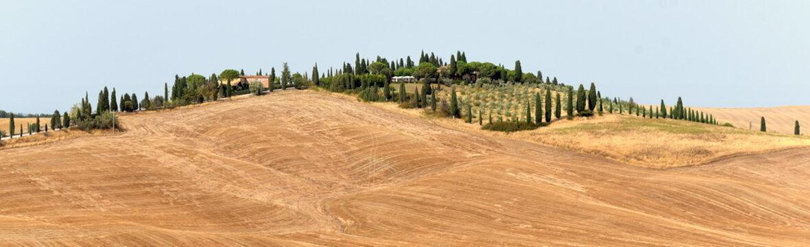 Weite Felder mit sanften Hügeln in der Crete Senesi