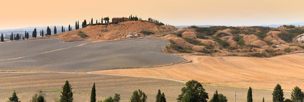 Liebliche Landschaft der Crete Senesi mit langer Zypressenallee