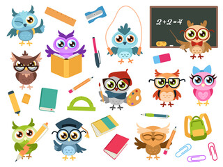 School owls. Color cute birds studying in school and teacher, owl with books and stationery. Teaching education cartoon vector characters