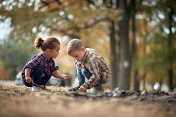 Little brother and sister interested in life in the ground in the forest