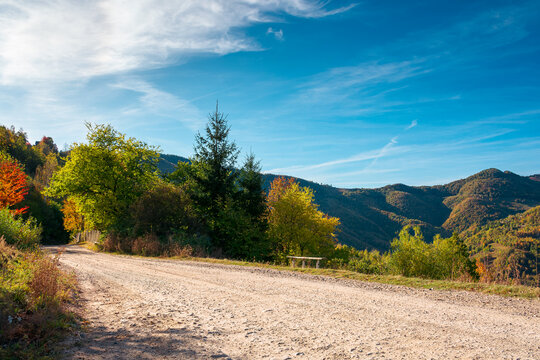 country gravel road in apuseni mountains, cluj country, romania. sunny autumn scenery in morning light. blue sky with clouds