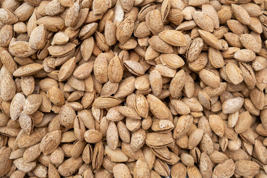 Unpeeled almonds sold at the local city farmers market
