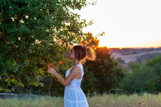 A young girl in profile with long blond tied hair, dressed in white, at sunset, touches the leaves of the magic tree