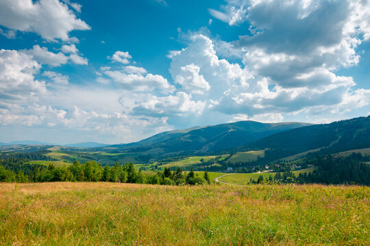 mountain landscape with meadow and valley. beautiful countryside scenery in summer. coniferous forest on the grassy slope. bright sunny weather with gorgeous cloudscape on the afternoon sky