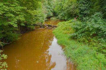 Mała, nieuregulowana, dzika rzeka płynąca pośród gęstych zarośli. Po intensywnych opadach deszczu woda ma brązowy kolor.