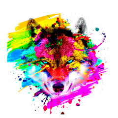 Fototapeta Wolf head with creative abstract colorful spots elements on white background obraz