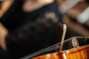 Closeup of violin strings