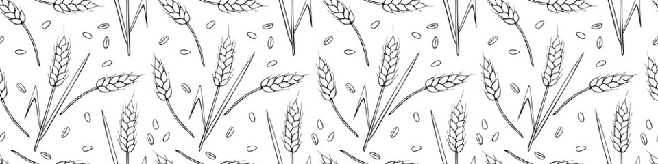 Wheat spikelets and grains, vector seamless pattern. Outline drawn in sketch style isolated. Design of print, wrapping paper, packaging on theme of bakery products, flour, harvest, thanksgiving.