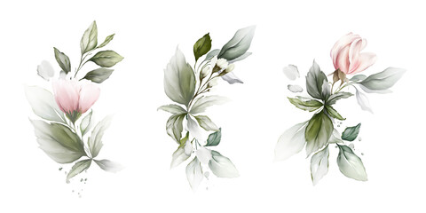 Set of botanical compositions with foliage and flowers on a white background.