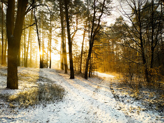 zima ranek