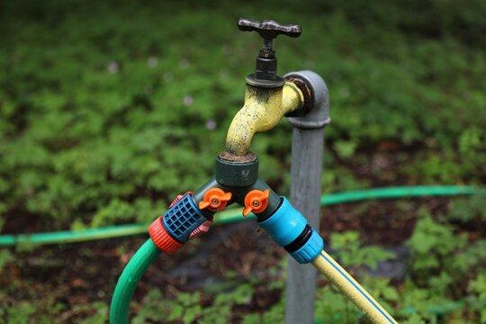 Garden hose tap splitter