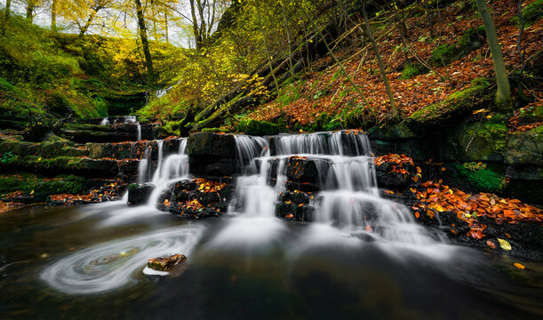beautiful photograph of a waterfall in a green forest