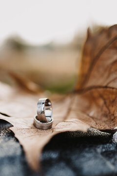 Vertical shot of wedding rings on an autumnal leaf, outdoors