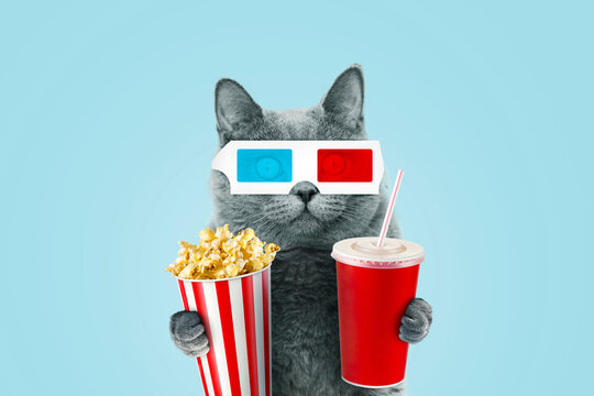 Funny hipster cat in 3D stereo glasses eating popcorn and a drinks coke at the movies on a blue background.