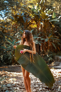 beautiful young sexy nude woman cover her body with palm leaf posing outdoors