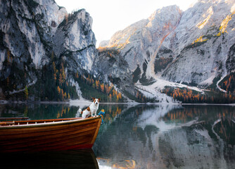 Fototapeta  dog Jack Russell Terrier in boat. Mountain Lake Braies. boat station. Morning landscape with a pet obraz