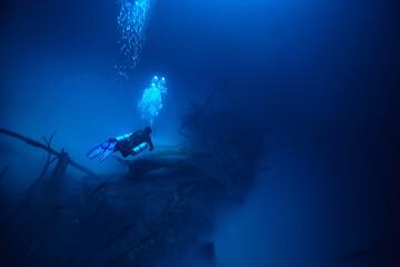 cenote angelita, mexico, cave diving, extreme adventure underwater, landscape under water fog