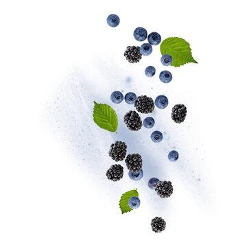 Fresh blueberries and blackberries dewberries and with leaves flying falling